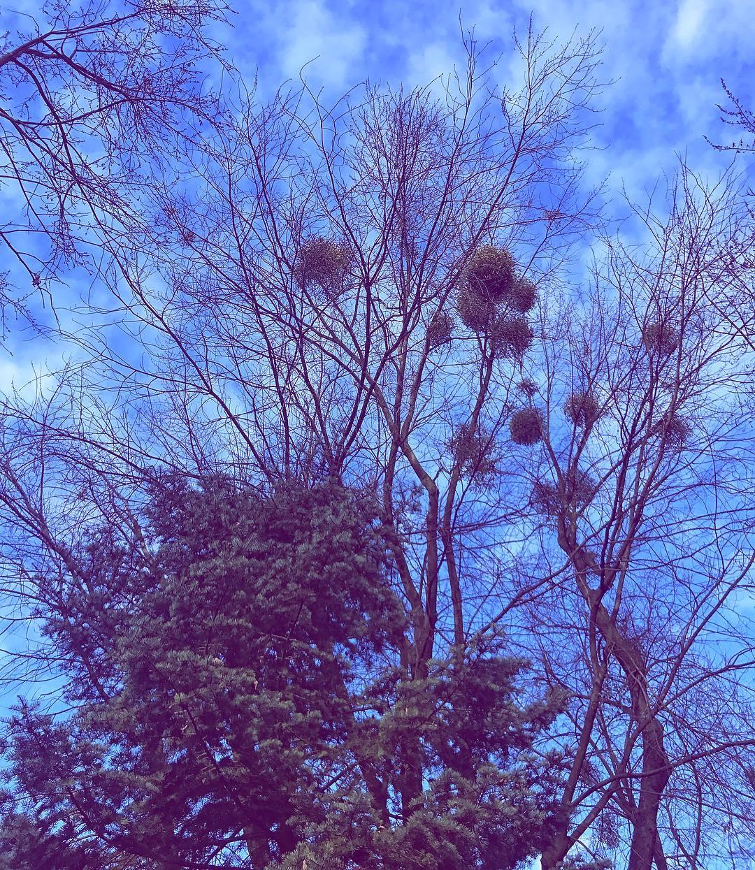 Dzi pogoda oszalaa U mnie wiosna i 12 stopni Ahellip